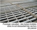 IMG/passage_canadien